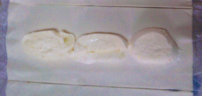 Fagottini mozzarella e alici
